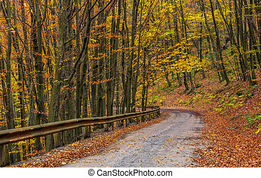 descend road turnaround in autumn forest. lovely nature...