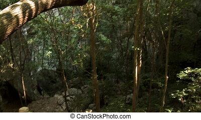 descendant, randonnée, randonneur, vers, caverne, sentier