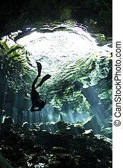 descendente, cenote