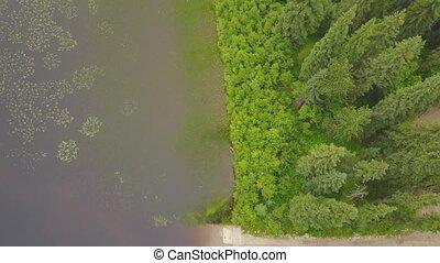 Descending aerial view of beautiful lake shore in Alberta,...