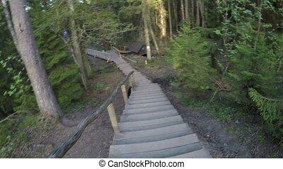 descendre, vieux, escalier