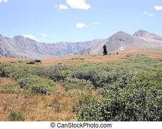 descolorido, montañas rocosas