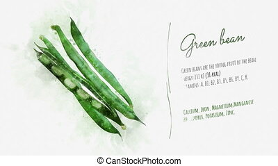 Description of the Green bean properties - Video is a card...