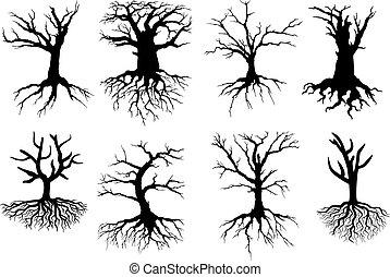 descubierto, siluetas, árbol, raíces