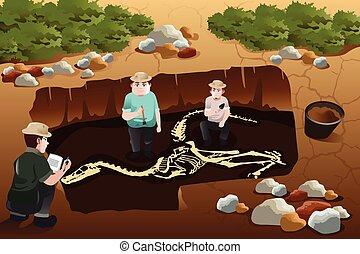 descubrir, dinosaurios, hombres, fósil