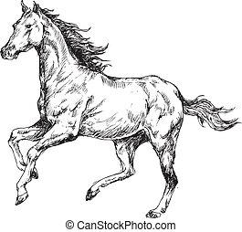 desenhado, cavalo, mão