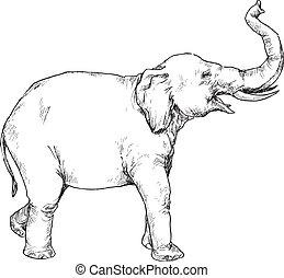 desenhado, mão, elefante