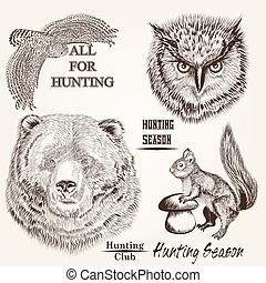 desenhado, vetorial, animais, mão