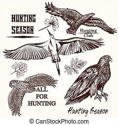 desenhado, vetorial, birds.eps, cobrança, mão