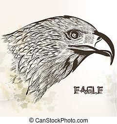 desenhado, vetorial, mão, águia