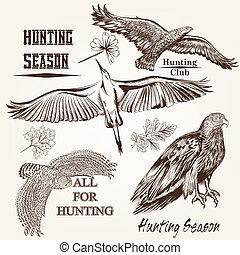 desenhado, vetorial, pássaros, cobrança, mão