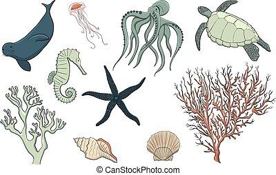 desenhado, vida, jogo, mar, mão