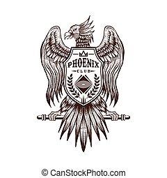 desenhar, phoenix, clube, ilustração, mão, vetorial