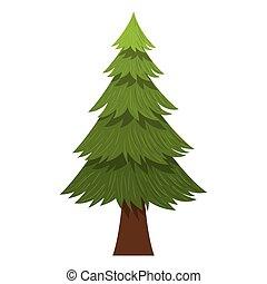 desenho, árvore, natural, pinho, isolado
