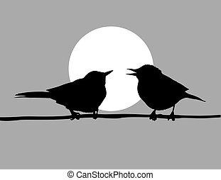 desenho, backgro, solar, pássaros, dois