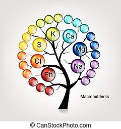 desenho, conceito, árvore, vitaminas, seu