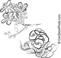 desenho, elementos florais