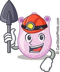 desenho, mineiro, ferramenta, viridans, conceito, caricatura, streptococci, capacete