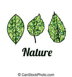 desenho, natureza