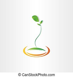 desenho, planta, vetorial, semente, germinação