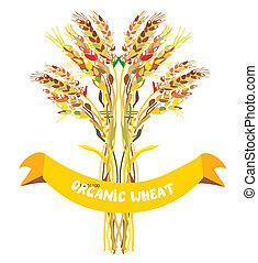 desenho, quadro, trigo, orgânica, etiqueta