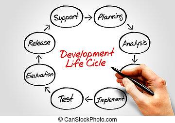 desenvolvimento, ciclo, vida