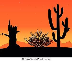 Desert and cactus
