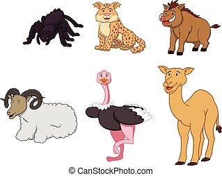 Desert animal cartoon illustration