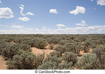 desert area - wide open space of desert land with nothing ...