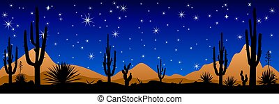 Desert at night, the stars shine - A stony desert at night....