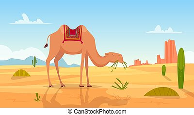 Desert background. African landscape with group of camels outdoor wasteland vector cartoon picture