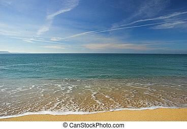 Desert beach - Beautiful beach empty of people