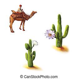Desert, Bedouin on camel, saguaro cactus with flowers, ...