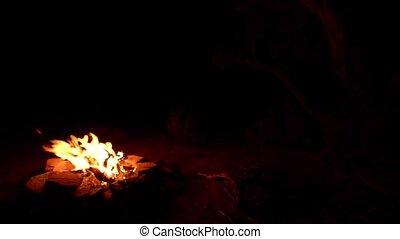 Desert Bonfire with copy space - Desert Bonfire with copy...