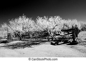 Desert Corral Infrared - Old Arizona corral in the Sonora...
