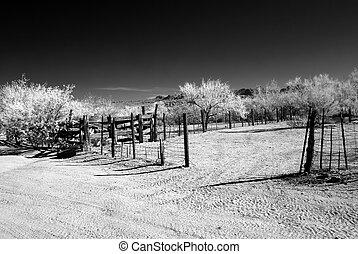 Desert Corral - Old Arizona corral in the Sonora desert