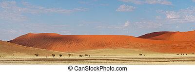 Desert dune panorama - Panorama landscape of red desert sand...