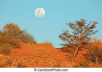 Desert dune with moon