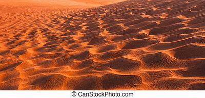 desert dunes in the sand at sunset