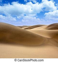 Desert dunes sand in Maspalomas Gran Canaria - Desert dunes...