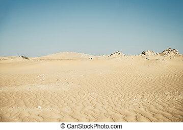 Desert dunes taken with a shallow depth of field