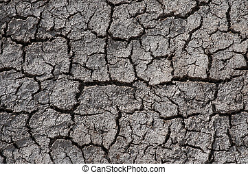 Desert, environment erosion problem