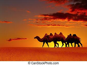 Desert fantasy, camels walking - Desert landscape with...