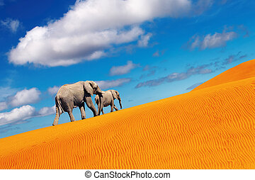 Desert fantasy, elephants walking - Desert landscape with...