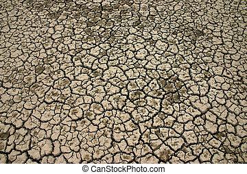 Desert ground, texture