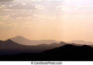 sonoran desert view