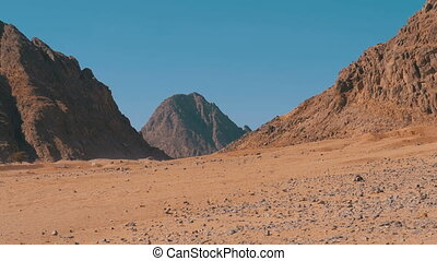 Desert in Egypt. Panoramic view of the Desert with Mountains...