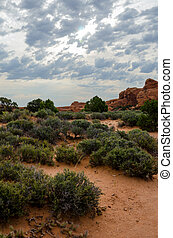 Desert Landscape in Arches