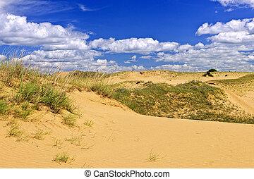 Desert landscape in Manitoba, Canada - Landscape of Spirit ...