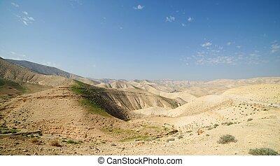 Desert landscape in spring